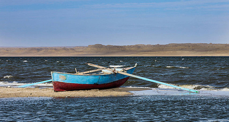 Fayoum Oasis Day Trip From Cairo