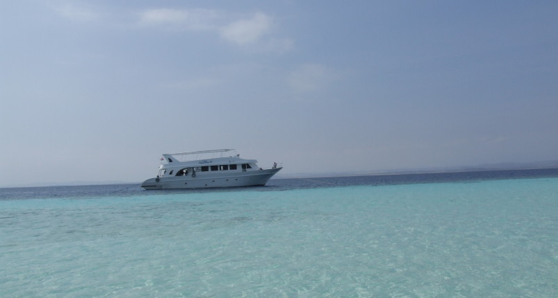 Snorkeling trip at Hamata islands