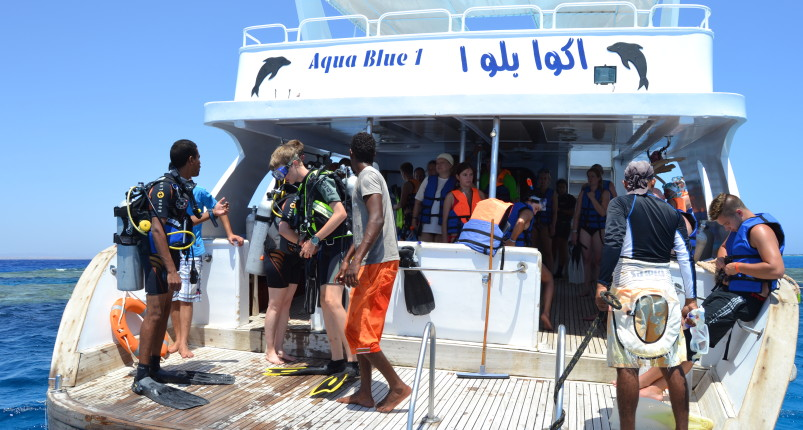 Marsa Alam Diving | Dolphin House Samadai Reef