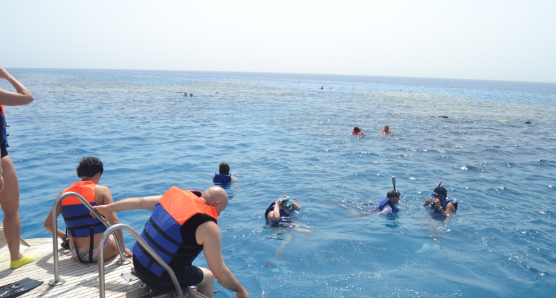 Marsa Alam Fishing
